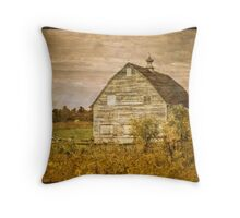 Portrait of a Barn Throw Pillow