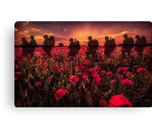 Poppy Walk Canvas Print