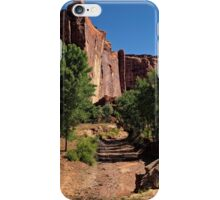 Beauty in the Canyon iPhone Case/Skin