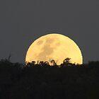 Super full moon rising 14th Nov, 2016 by BigAndRed