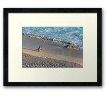 Surfer contemplating the waves Framed Print