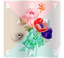 Pretty Botanicals Poster