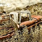 Abandoned Chevy C-10 Pickup by mal-photography