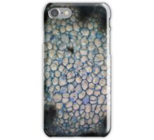 E. runyonii Stem iPhone Case/Skin