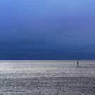 ocean by Daphne Kotsiani