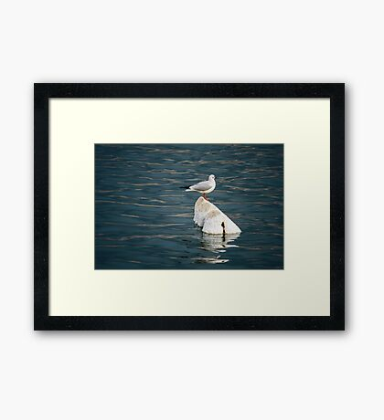 Floated Framed Print