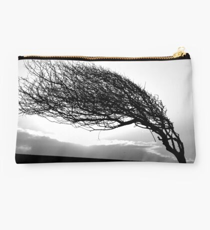 Where the wind blows Studio Pouch