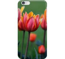 Bright colorful tulips iPhone Case/Skin