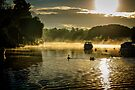 On Golden Pond by MarcW