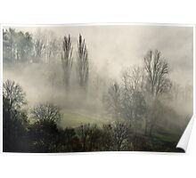 A misty autumn morning Poster