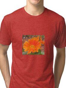 Orange Blossoms  Tri-blend T-Shirt