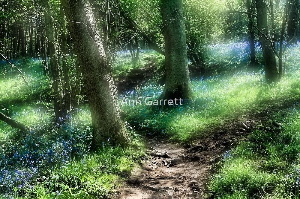 Bluebell Hill by Ann Garrett