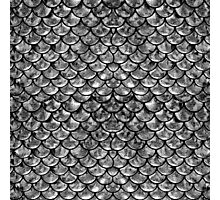 Mermaid Scales - Silver Photographic Print