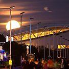 moonrise. 14th nov. super moon by terezadelpilar ~ art & architecture