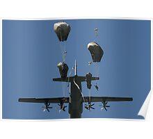 173rd Airborne Brigade  Poster