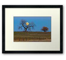 November Supermoon Framed Print