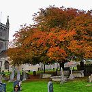 Colour at the Colerne Parish Church ( 1 ) by Larry Lingard-Davis