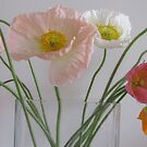 pastel poppies by Jeannine de Wet
