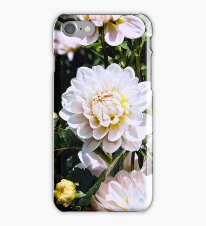 Dahlia Love  iPhone Case/Skin