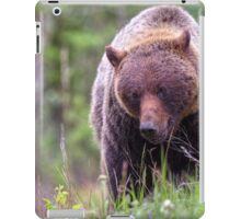 Big Mama Grizzly iPad Case/Skin