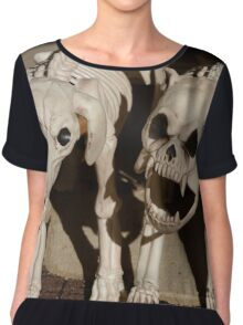 Dogs of Hell Chiffon Top
