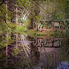 Impressionist Reflections by TonyCrehan