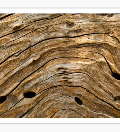 Woodgrain patterns Sticker