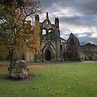 Kirksall Abbey by Irene  Burdell