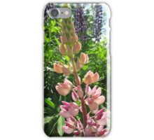 Lovely Lupins iPhone Case/Skin