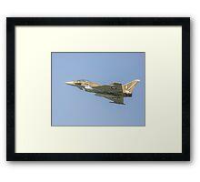 Euro  fighter Framed Print