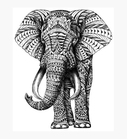 Ornate Elephant Photographic Print