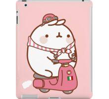 Italy Hamster iPad Case/Skin