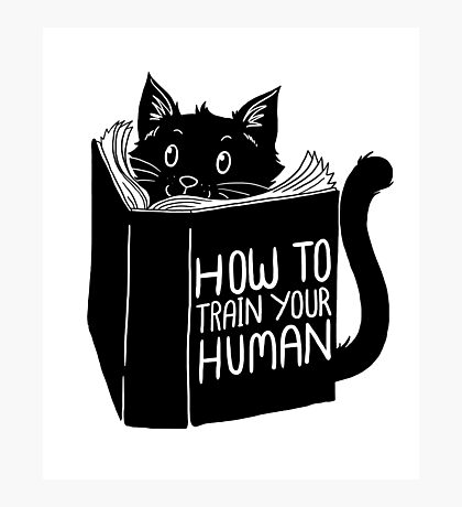 How To Train Your Human Cats Kittens Pussy Lovers Gift T-Shirt Photographic Print