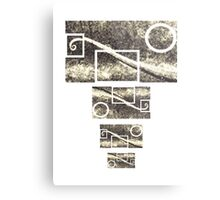 Tailed chameleon Metal Print