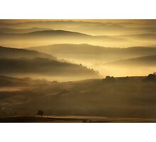 Fantasy meadow with fog in the morning Photographic Print