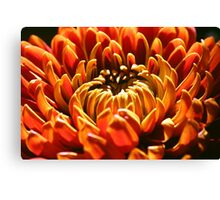 Autumn Bloom Canvas Print