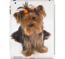Sweet Yorkie Puppy iPad Case/Skin