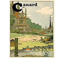 French Canard and Ducklings Paddling on the River Photographic Print