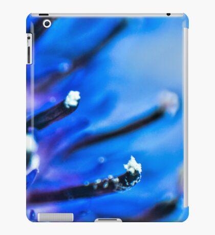 Blue Stamp iPad Case/Skin