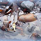 A  Water Shute for a Fairy...... Dorset UK by lynn carter