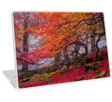 Deep in the forest Laptop Skin