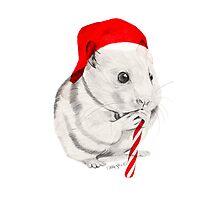CHRISTMAS HAMSTER Photographic Print