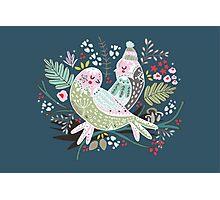 Holiday Birds Love II Photographic Print