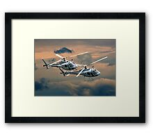 Dancing Whirly Birds Framed Print