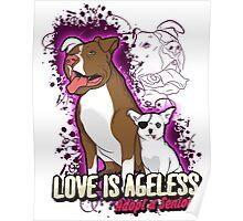 Adopt a Senior Pet, Love is Ageless Poster