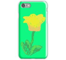 Spring All Year iPhone Case/Skin