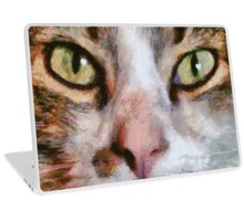Cool for Cats Laptop Skin