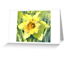 Yellow Daffodil Flower - Watercolours Greeting Card