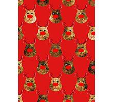 Reindeer Pattern Photographic Print