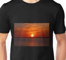 Beautiful Oblivion Unisex T-Shirt